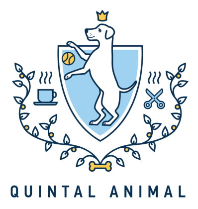 Quintal Animal Pet Friendly